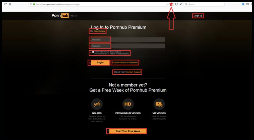 PornoHub Premium Login Account