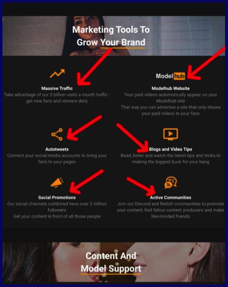 PornHub marketing tools to grow model brand